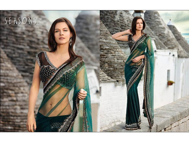 designer-saree-collection-2014-by-seasons- (1)