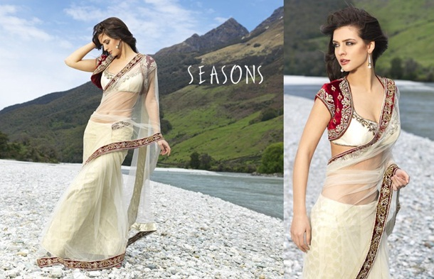 designer-saree-collection-2014-by-seasons- (11)