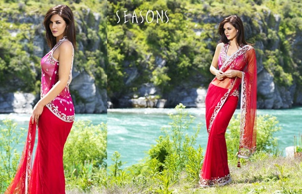 designer-saree-collection-2014-by-seasons- (5)