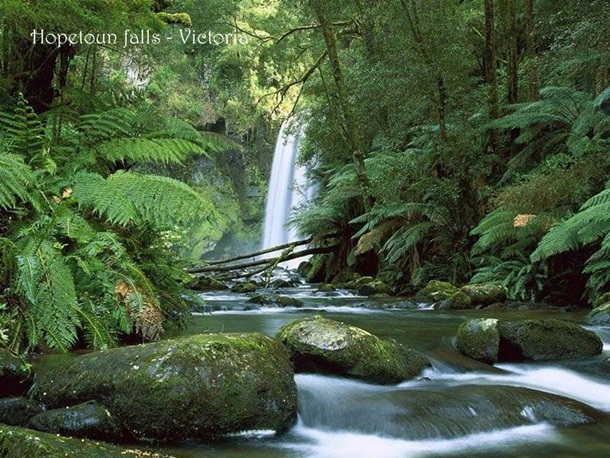 places-to-see-in-australia-36-photos- (8)