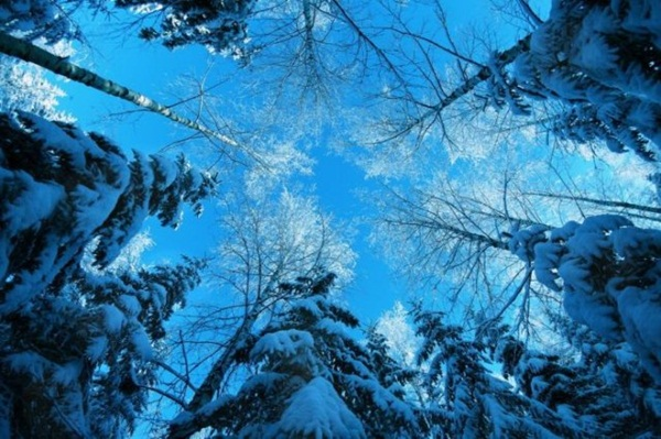 26-winter-photos- (18)