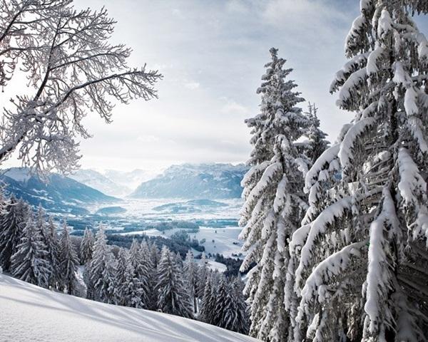 26-winter-photos- (3)
