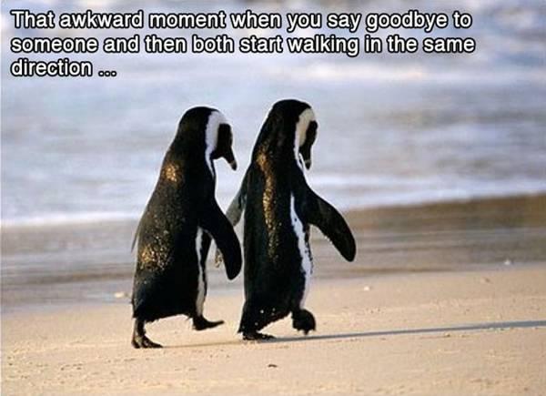 funny-awkward-situation- (3)