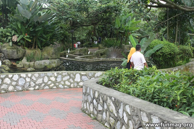 kl-bird-park-best-things-to-see-in-kuala-lumpur- (16)