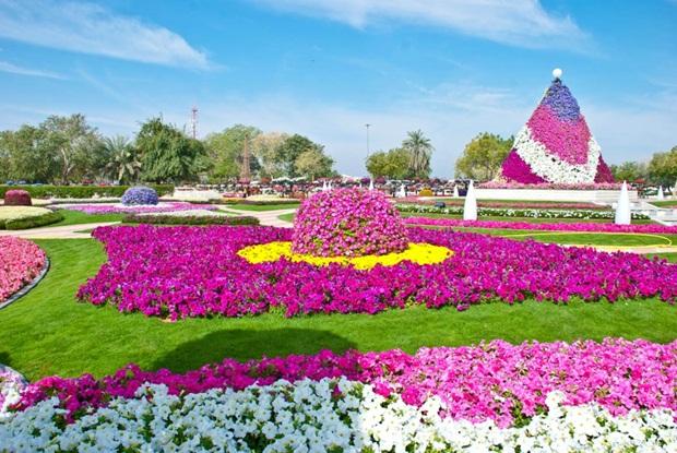 al-ain-paraidse-beautiful-flowers-park- (13)