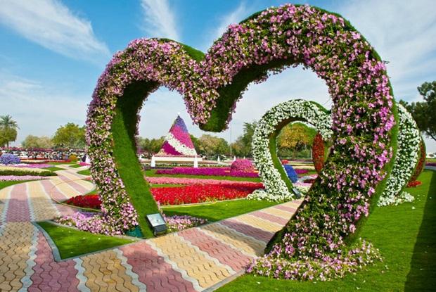al-ain-paraidse-beautiful-flowers-park- (14)