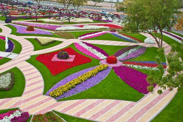 al-ain-paraidse-beautiful-flowers-park- (6)