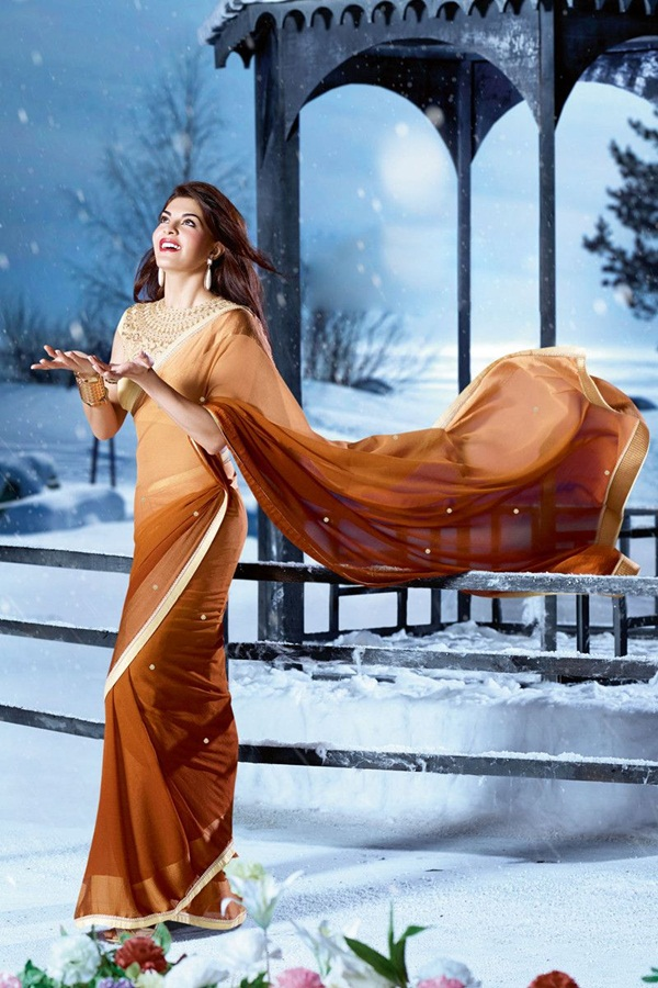 jacqueline-fernandez-saree-collection- (1) (2)