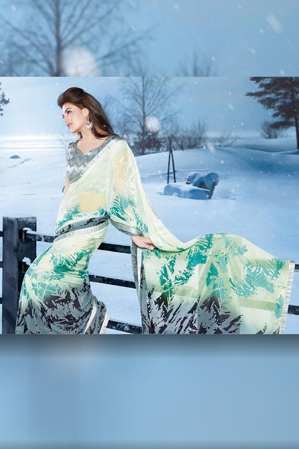 jacqueline-fernandez-saree-collection- (1) (59)