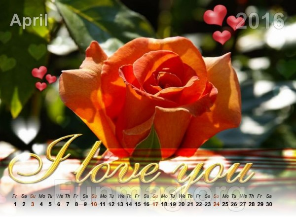 love-calendar-2016- (4)
