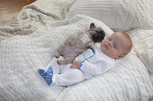 cute-babies-with-puppies- (5)