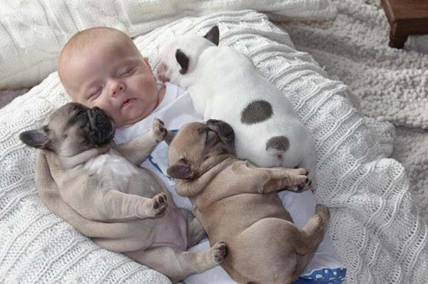 cute-babies-with-puppies- (6)