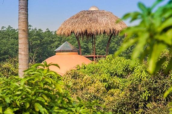 unique-dome-house-in-mango-farm- (14)