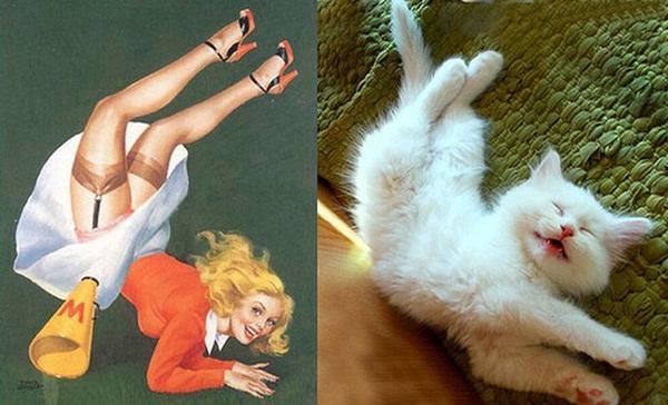 cats-imitate-the-girls- (19)