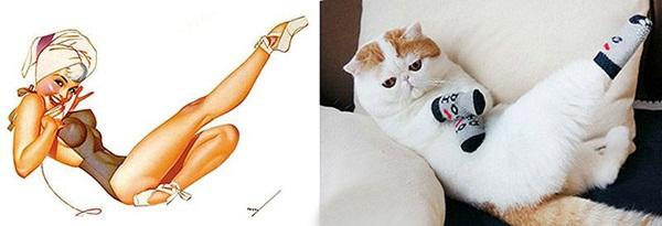 cats-imitate-the-girls- (21)