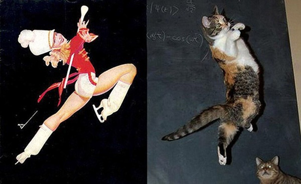 cats-imitate-the-girls- (9)