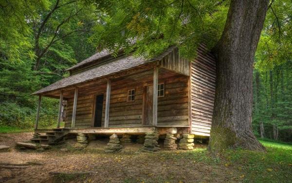 wood-house- (10)