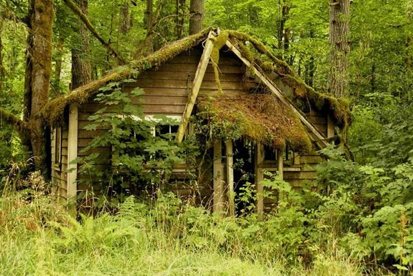 wood-house- (2)