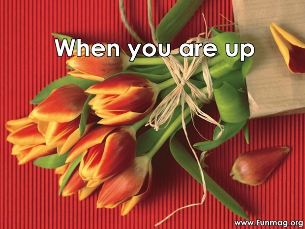 friends-are-like-flowers-friendship-cards- (11)