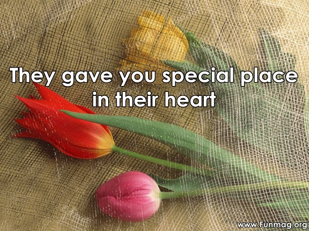 friends-are-like-flowers-friendship-cards- (24)