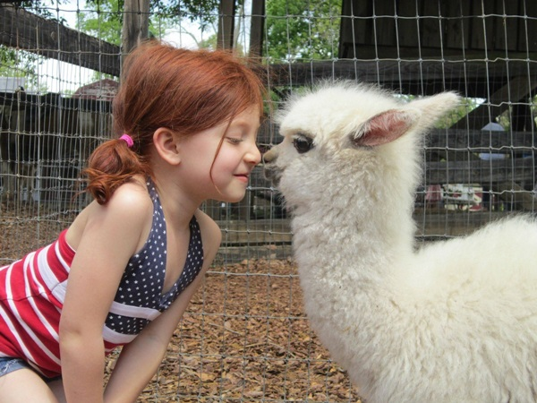 pictures-of-children-and-animals- (1)