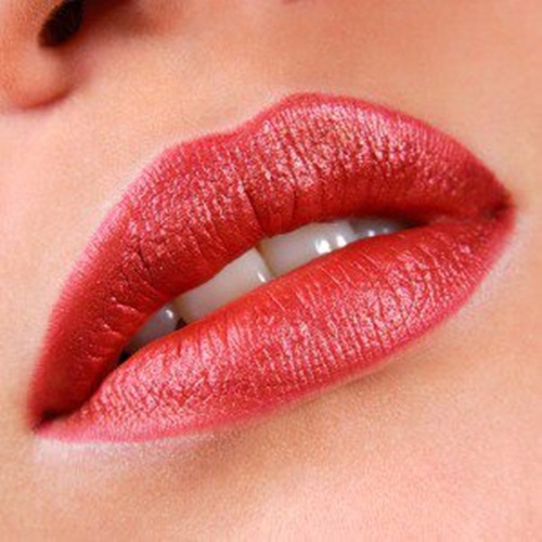 best-dark-lipstick-shades- (26)