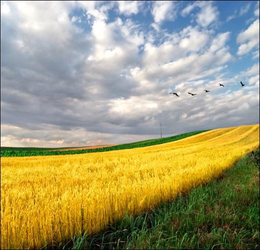 beautiful-landscape-22-photos- (11)