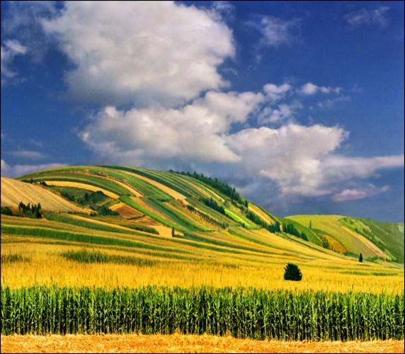 beautiful-landscape-22-photos- (20)
