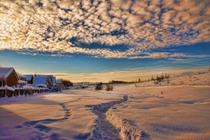 21-winter-photos- (21)
