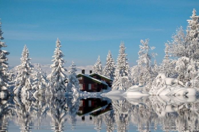 21-winter-photos- (3)
