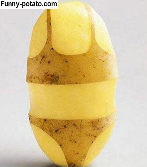 a potato skin bikini. if this were a human, this image would be horrifying.