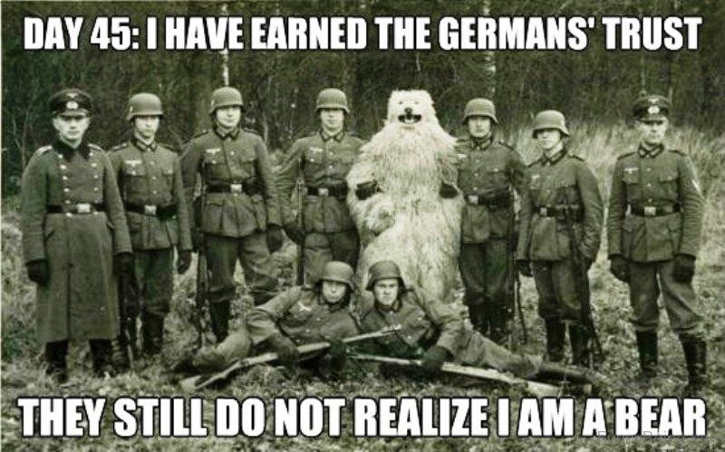 German Soldier Memes Gifs Imgflip