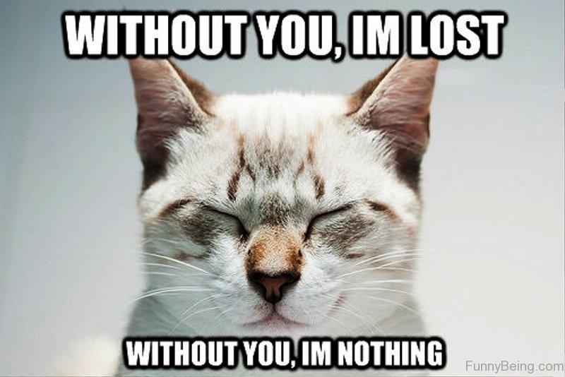 31 Most Funny Romantic Memes