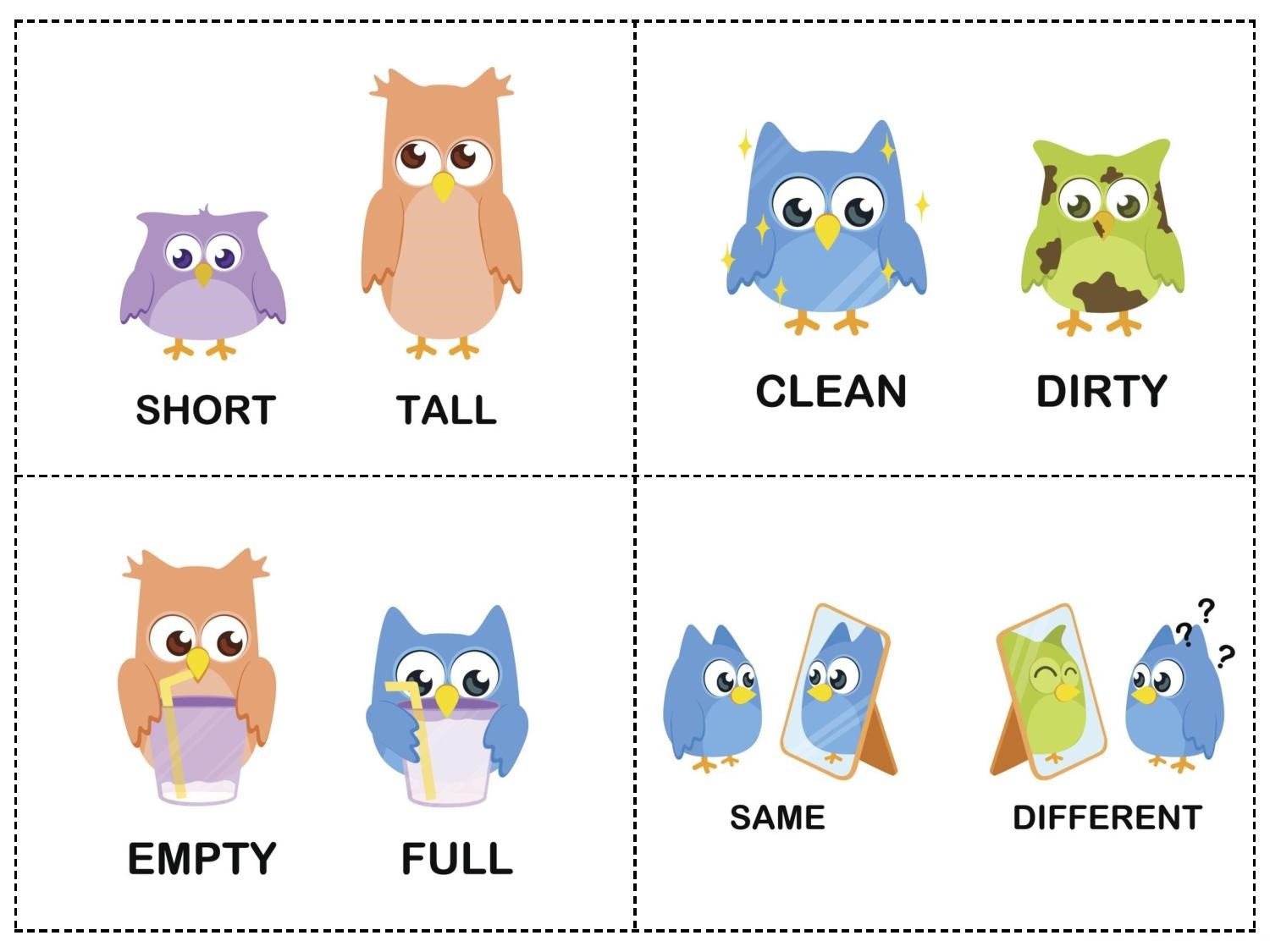 Owl Theme Opposites Cards 1 Preschool And Homeschool