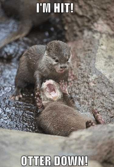 I'm hit–Otter down!
