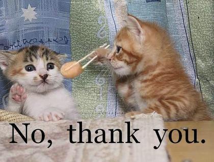 https://i2.wp.com/www.funnyjunksite.com/wp-content/uploads/2007/04/funny_cat_pictures_091.jpg