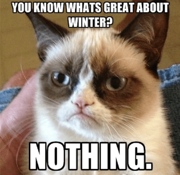 https://i2.wp.com/www.funnyonlinepictures.com/wp-content/uploads/2013/02/grumpy-cat-hates-winter.png