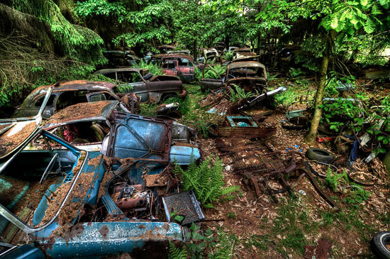 Car Graveyard in Chatillon Belgian Forest