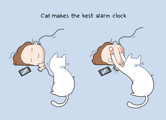 10 Illustrations Show The Benefits of Having a Cat in The House