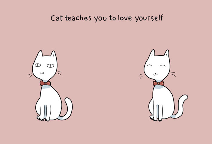 Advantages of Having a Cat - Cat teaches you to love yourself