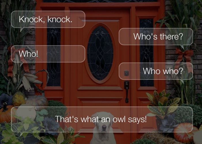 Funny Knock Knock Jokes - Knock, knock. Who's there? Who! Who who? That's what an owl says!
