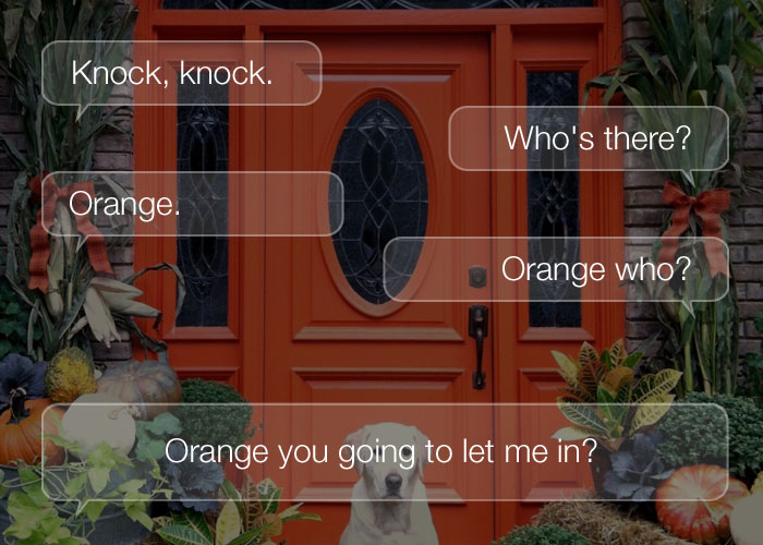 Best Knock Knock Jokes - Knock, knock. Who's there? Orange. Orange who? Orange you going to let me in?