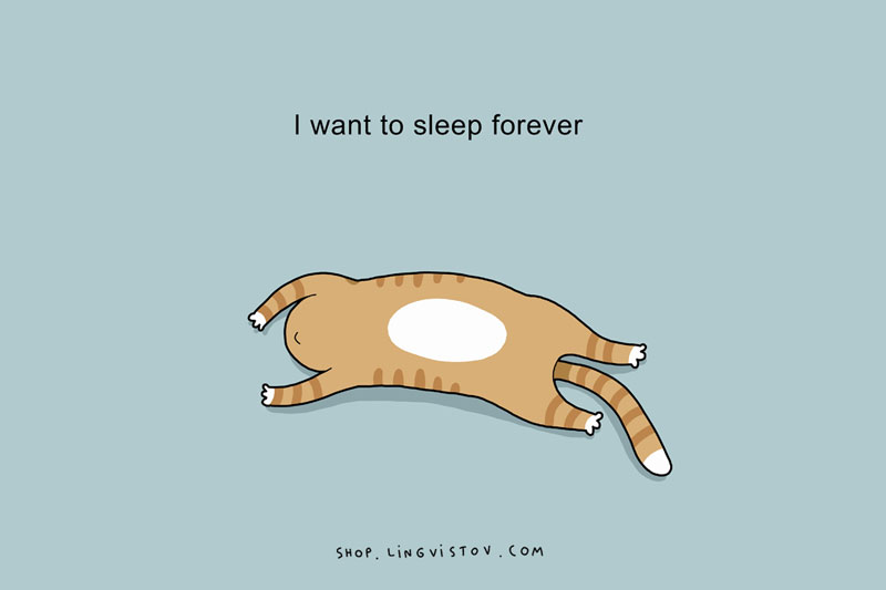 Too much sleep - I just want to sleep forever.