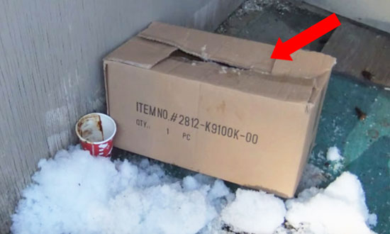 This Woman Heard Muffled Cries Coming From This Box. What She Found Inside Is SHOCKING
