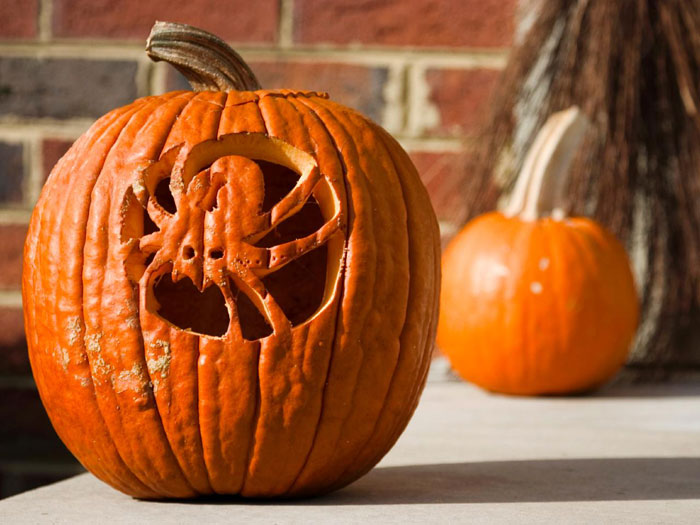 Awesome Pumpkin Carving Ideas - Spider