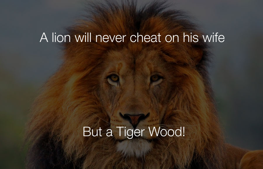Hilarious Jokes - A lion will never cheat on his wife but a tiger wood.