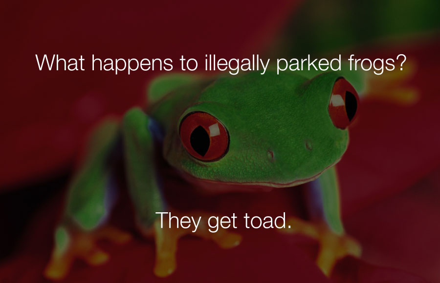 Hilarious Jokes - What happens to illegally parked frogs they get toad.