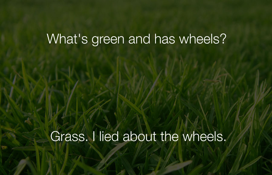 Funniest Jokes - Whats green and has wheels grass i lied about the wheels.