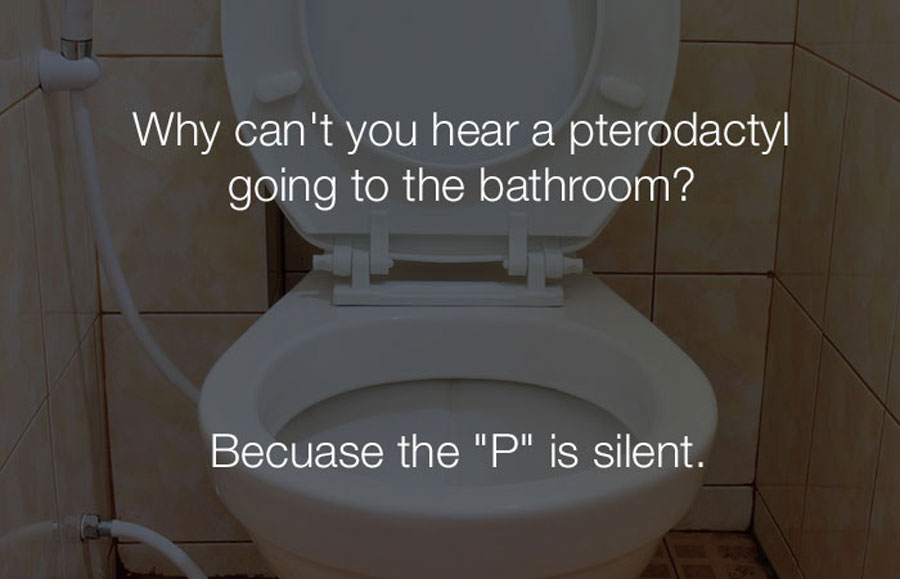 Funny Jokes - Why cant you hear a pterodactyl going to the bathroom.