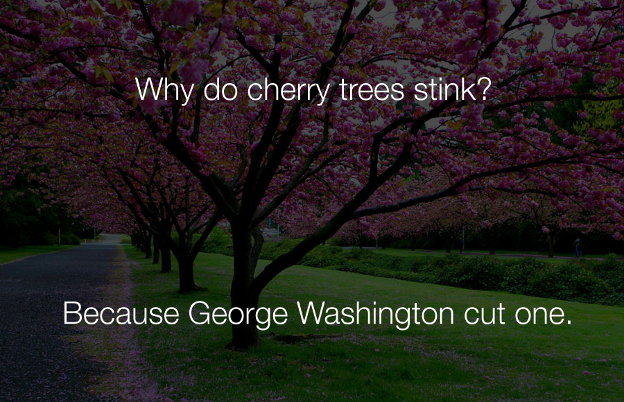 Funny Jokes - Why do cherry trees stink.